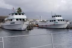 SB Harbor boats