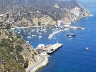 Avalon Harbor on Catalina