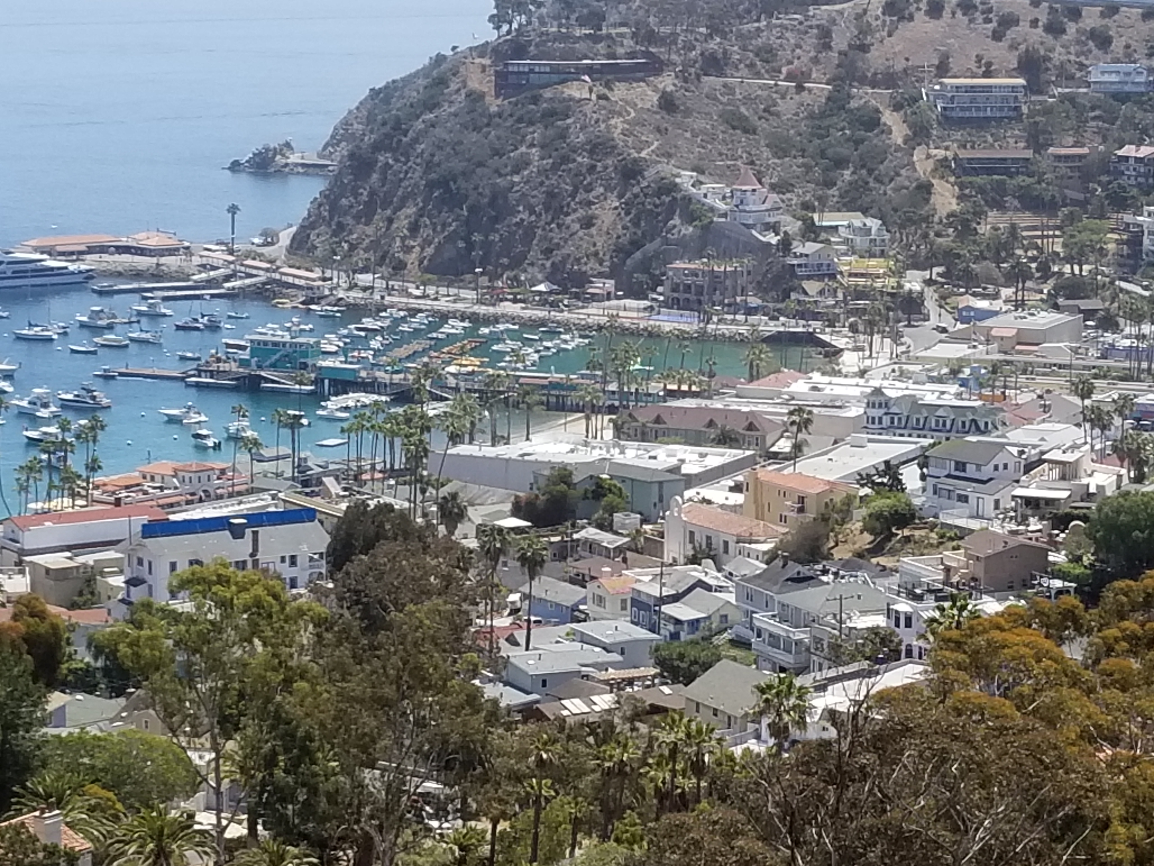 Catalina-Harbor-looking-east