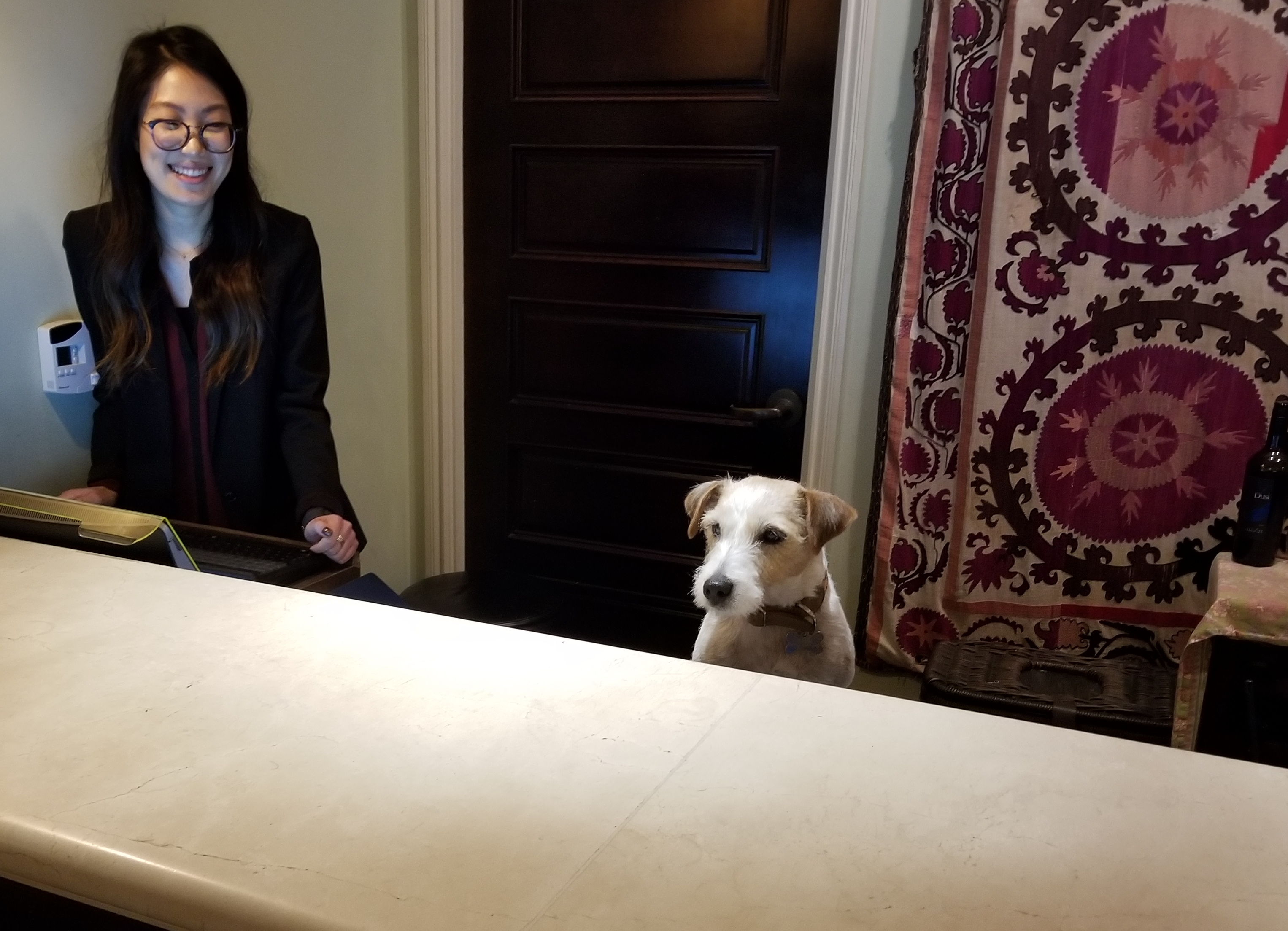 pet-friendly Canary Hotel