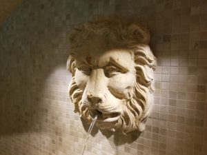 lion-fountain-center-for-wellbeing